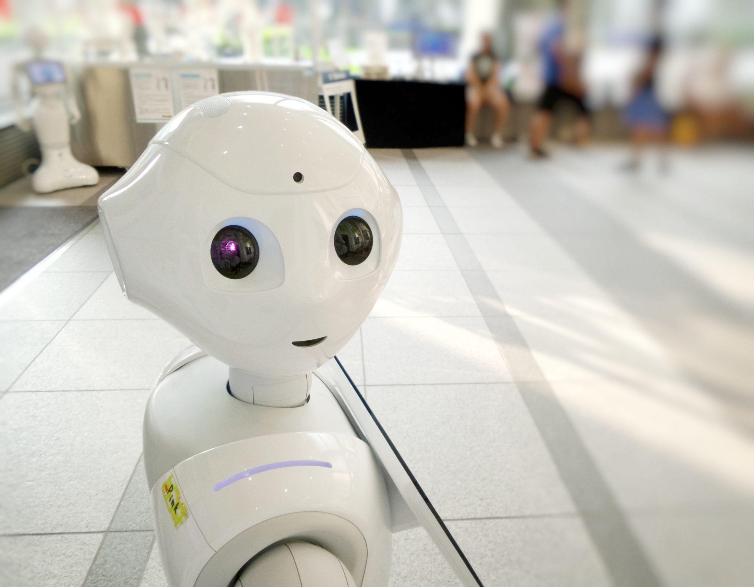 Bild zum Interview Was Bots in der Weiterbildung leisten können